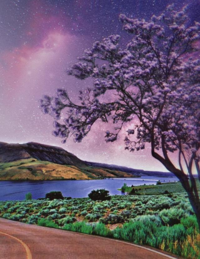 #freetoedit #myedit #madewithpicsart  #landscape #sky #lake #tree #road  @picsart