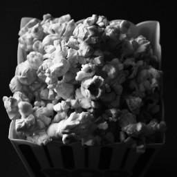 pandemic popcorn dark blacknwhite shades