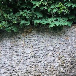 garden urban wall grungetextured stonewall freetoedit