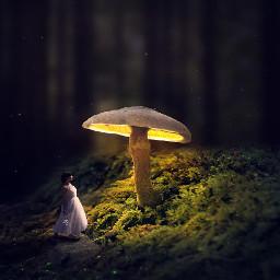 magic fantasy livorno