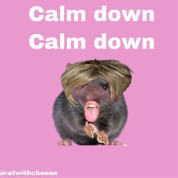 freetoedit karen calmdown rat lips