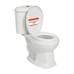 kurtisconner toilet name kurtisneedstostopeatingcottencandyramenohfortheloveofgodivebeentramutized freetoedit