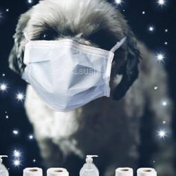 freetoedit coronavirus masks purell washyourhands