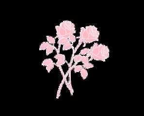 roses aesthetic pastel shawnmendes flowers freetoedit