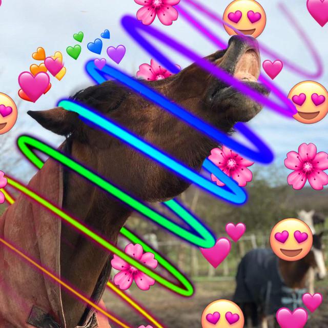 My pony lady 🌟💞 #freetoedit