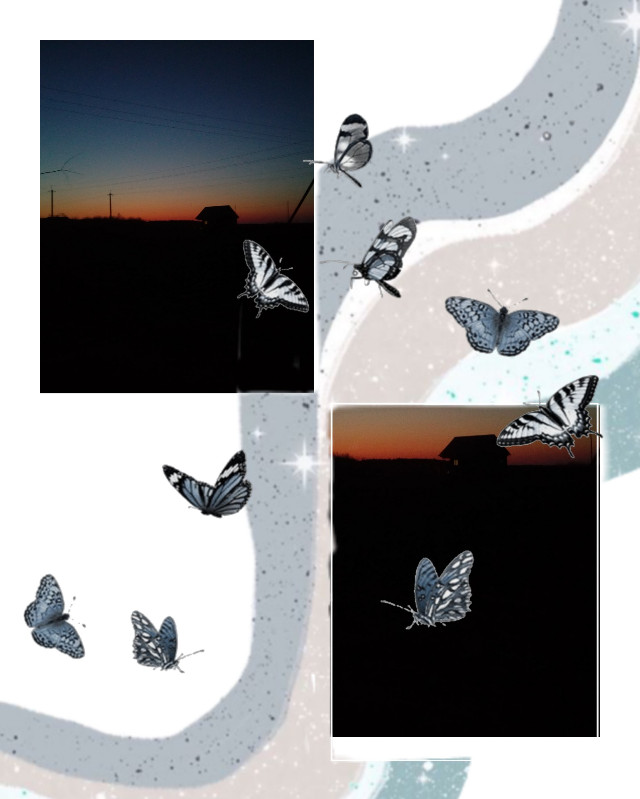 #freetoedit #butterfly 🦋