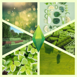kolaż collage green thesims picsart freetoedit ccgreenaesthetic greenaesthetic createfromhome stayinspired