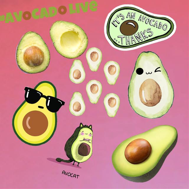 #avocadolive  #freetoedit