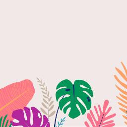 background backgrounds andreamadison tropical palmfrond freetoedit