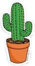 green brown white cactus aesthetic freetoedit