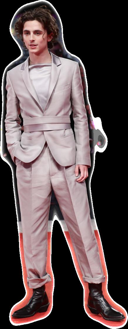 #timotheechalamet #timothee #aesthetic #fashion #sticker #suit #moodboard #edit #freetoedit