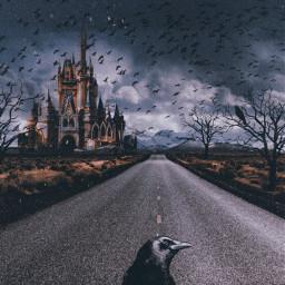 freetoedit birds road castle raven