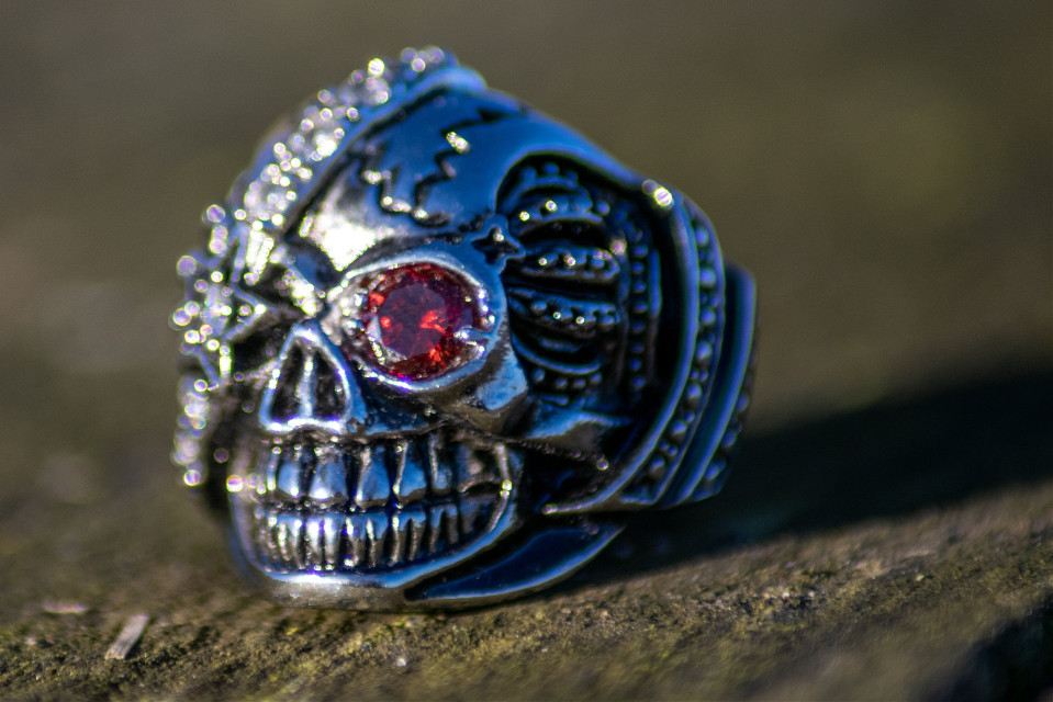 just jewelry 🤷♀️😁  #jewerly #skull #photography #mypic #macro  #freetoedit