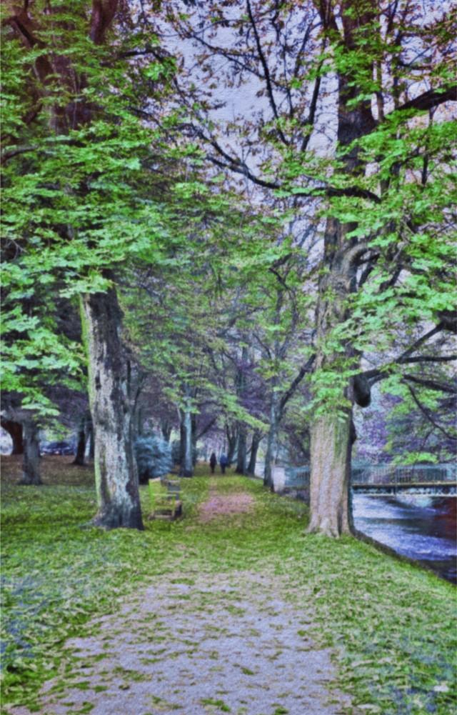 #freetoedit #landscape #picsarteffects  #oilpaintingeffect #coloreffect  Original image @fotomomente2-