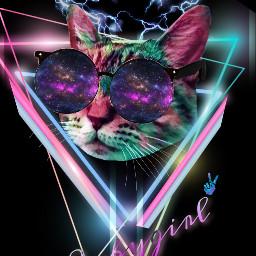 my cat neon babygirl kitty freetoedit