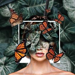 giantbutterflys girlfalling leaves freetoedit ecdreamdestinations dreamdestinations