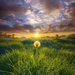 nature freetoedit remixit springtime spring