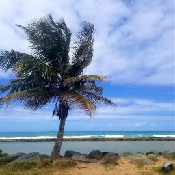 myphotography beach naturephotography myhometown nature freetoedit