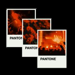 freetoedit remixit pantone aesthetic red