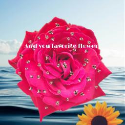 sunflower🌻💛🌻 freetoedit sunflower