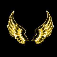 freetoedit puppypicklelove wings neon golden