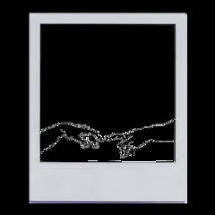 freetoedit aesthetic polaroid collage hands