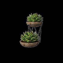 plants green niche nichememe png freetoedit