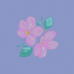 aesthetic flower flowers sakura sakuraflowers