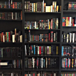 booklover freetoedit pcshelfiesandflatlays shelfiesandflatlays