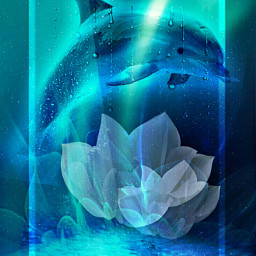 freetoedit dolphin lily water fcstayinspired