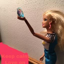 barbiedolledits barbiedoll freetoedit