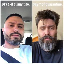 covid19 quarantinelife helpme
