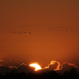 freetoedit sunset magic eveningsky clouds