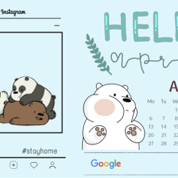 freetoedit icebear blue cute bear ecdesktopwallpapers stayinspired desktopwallpapers