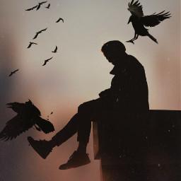 freetoedit silhouette people birds raven
