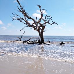 freetoedit stayinspired ocean beach atlantic