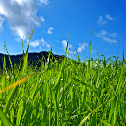 freetoedit naturephotography skyblue greenland mountainview