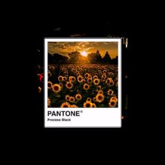 polaroid sunset polaroidphoto yellow sunflower freetoedit