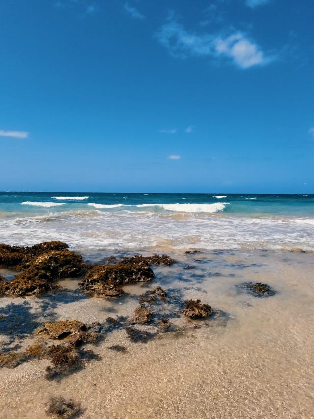 #myphotography #naturephotography #myhometown #puertorico #beach #waves #nature #filter #freetoedit
