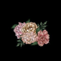 freetoedit flowers floral bouqet arrangement