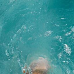 hawaii quaratine water ocean pacific freetoedit