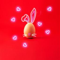 freetoedit egg neonsigns bunny bunnyears irceggdecoration eggdecoration
