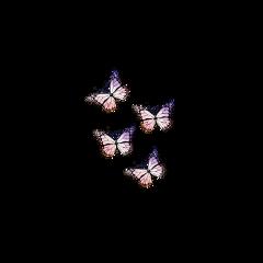 freetoedit butterfly butterflyaesthetic glitter sparkle