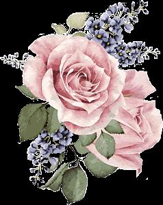 aesthetic pink rose drawing notmyart freetoedit