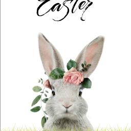 freetoedit happyeaster easter bunny mrlb2000