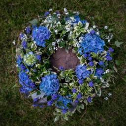 freetoedit flower inmemory nature naturephotography