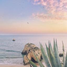 coastline beachside nature sunrise morningsunrise freetoedit