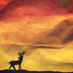 art diy paint sunset deer freetoedit pcdiyphotography diyphotography