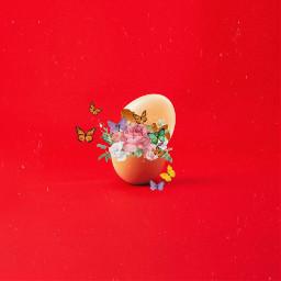 freetoedit egg irceggdecoration eggdecoration