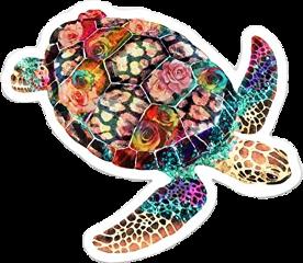 rainbow green pink purple turtle freetoedit